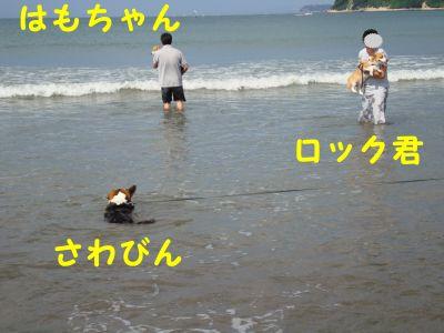 20090915-7.jpg
