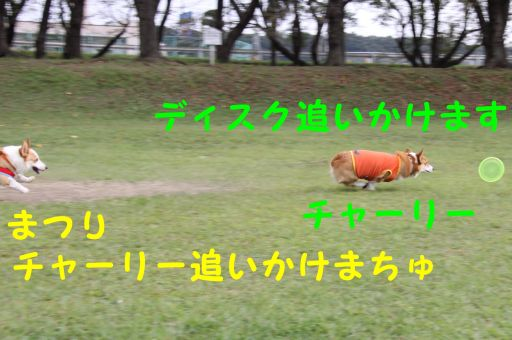 20090929-6b.jpg