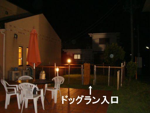 20091011-12A.jpg