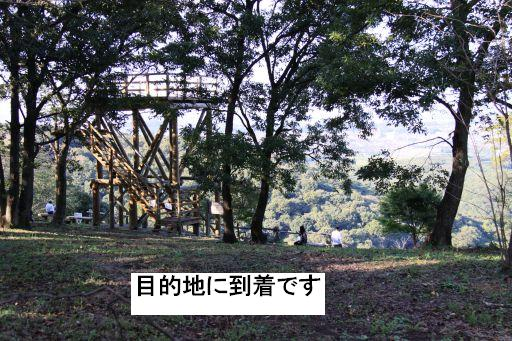 20091011-9A.jpg