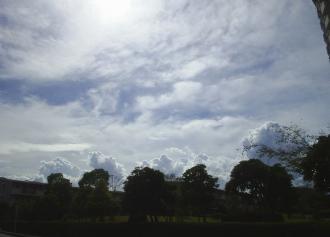 木と雲がセット (30%)