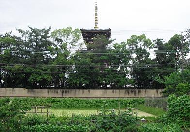 1 西ノ京・薬師寺