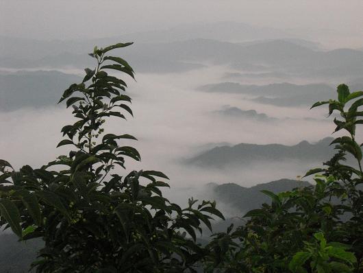 6  高見山頂上より吉野川
