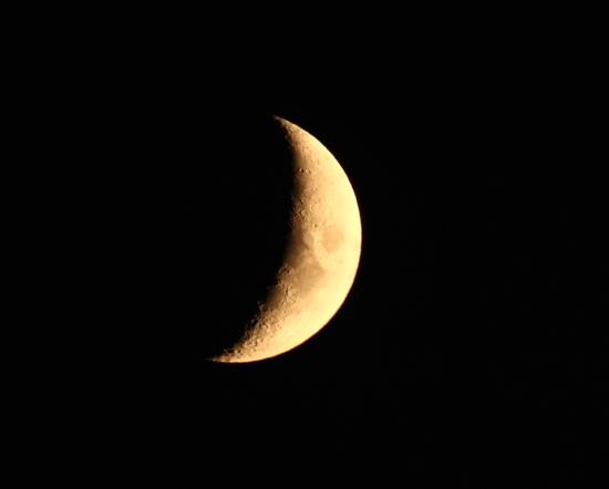 月夜の夜は・・・