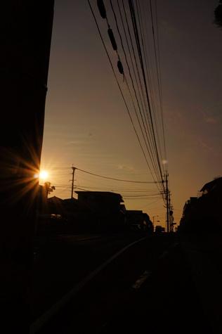 夕日がキラリ