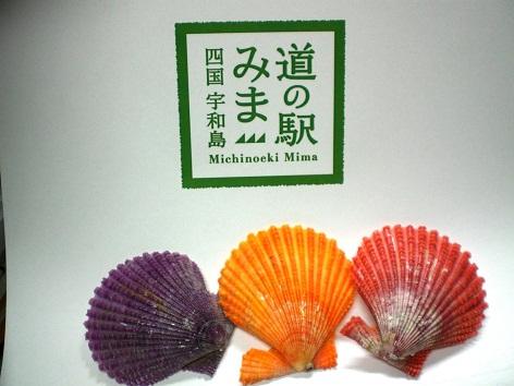 20120108-9.jpg