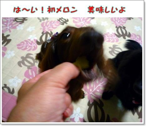 けーき3P1120366