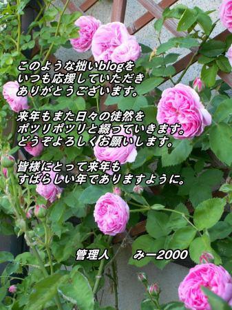 nenga1.jpg