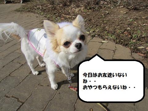 ai04_20120210192809.jpg