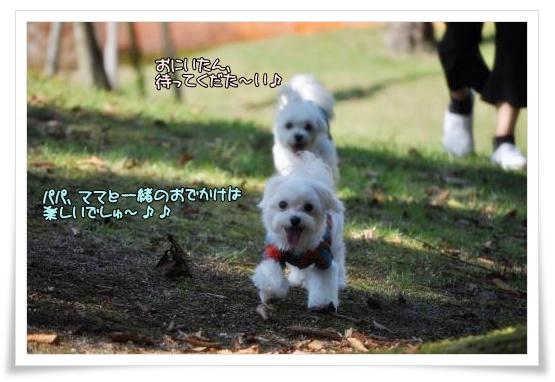 006-DSC_0059_convert_20101013220054[1]