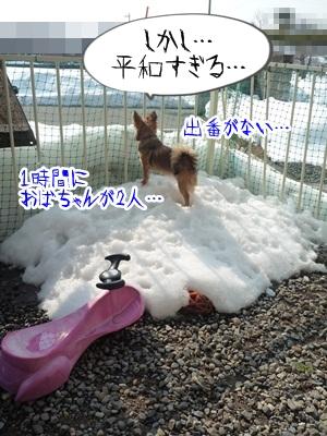 雪とこそきちP1270297