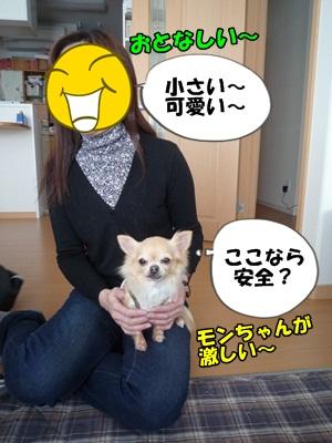すーちゃんP1280267