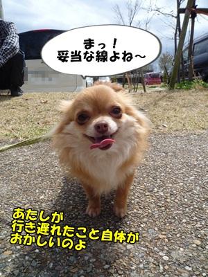 坪倉P1280517
