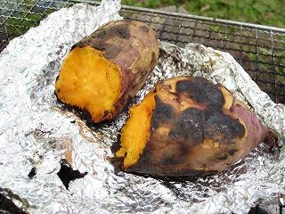 安納芋は、幻の芋とも言われています。