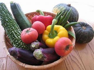 夏の野菜たち・・