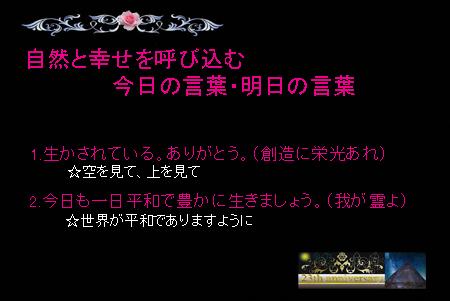 DSC_0002-2-450.jpg