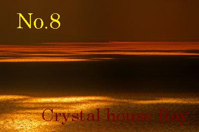 DSC_0662-1-400-8_20120128112706.jpg