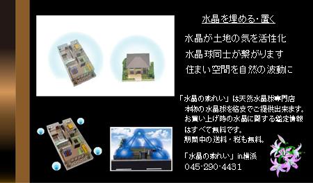 pho-609-450_20120210112657.jpg