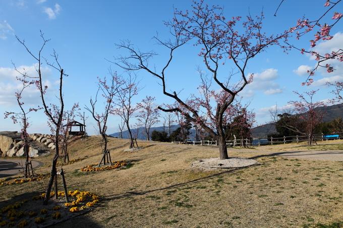 城山歴史公園