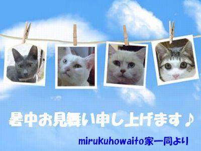 decojiro-20110718-114238.jpg