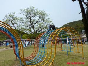 2011藤祭り4