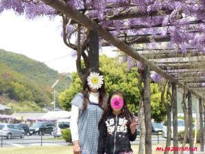 2011藤祭り29