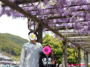 2011藤祭り28