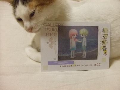 個展のDMと猫2