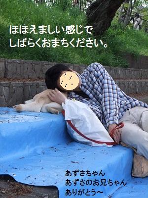 しばらく20110624