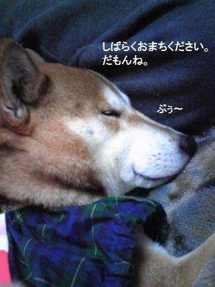 20110711しばらく(110130)