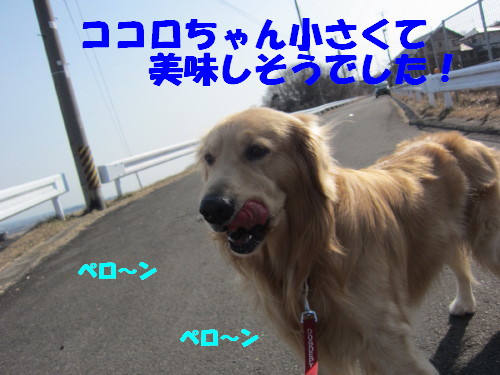 2.22 005