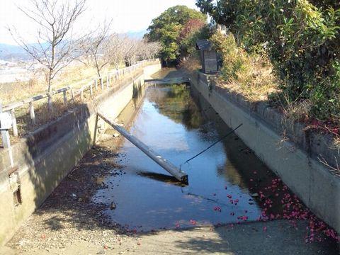 120303kawahi.jpg