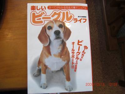 015_convert_20091014092206.jpg