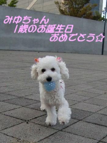 誕生日みゆ
