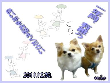 201112301.jpg