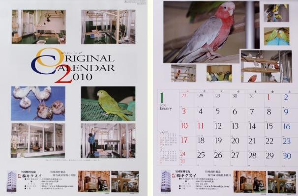 2010年キクスイカレンダー
