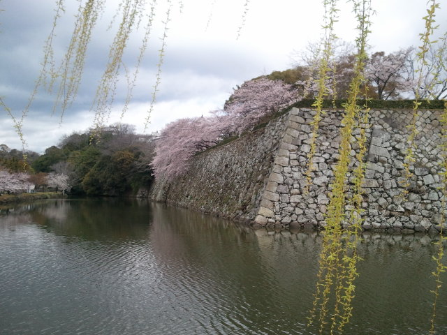 2011-04-09_10_57_45.jpg