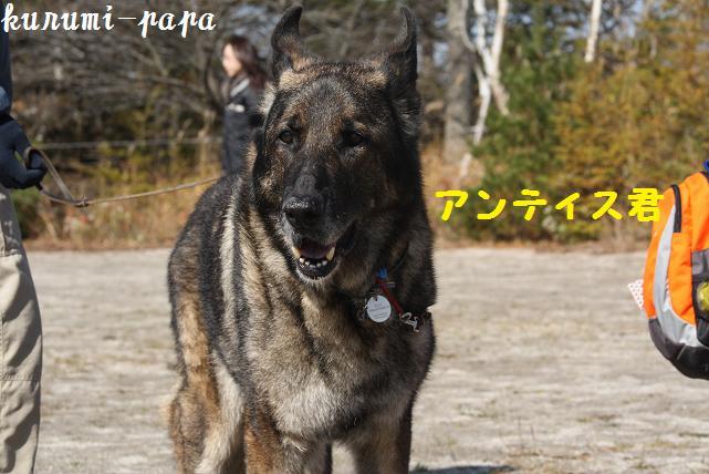 2009 霧ヶ峰 064