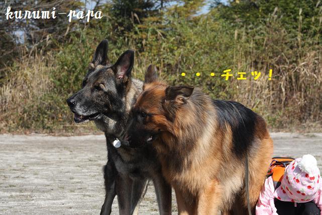 2009 霧ヶ峰 081
