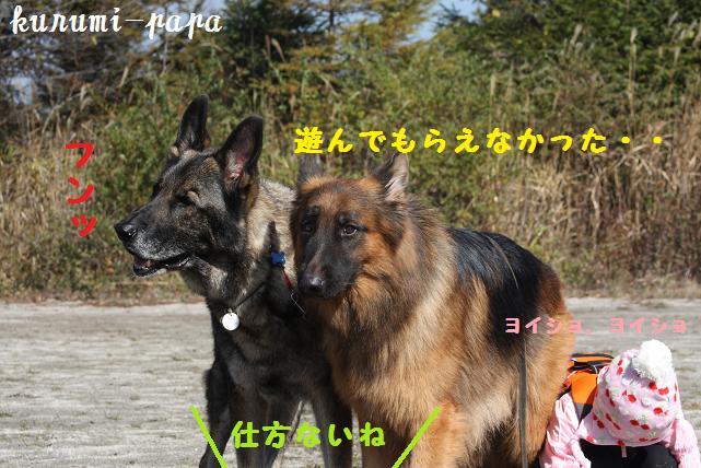 2009 霧ヶ峰 080