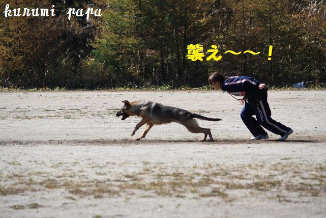 2009 霧ヶ峰 138