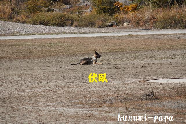 2009 霧ヶ峰 118