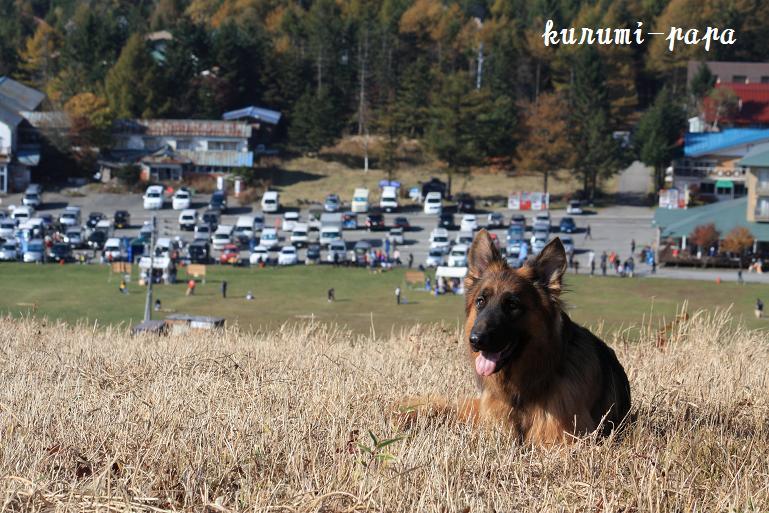 2009 霧ヶ峰 228