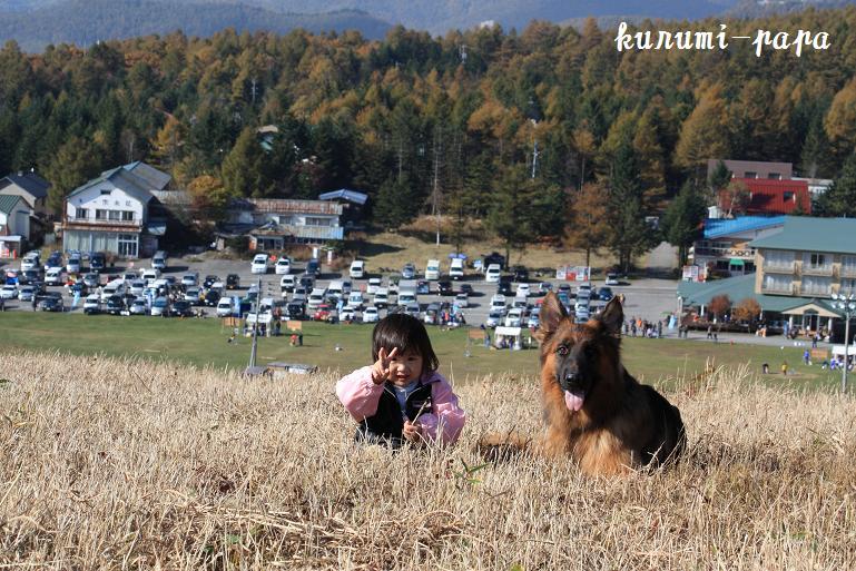2009 霧ヶ峰 241