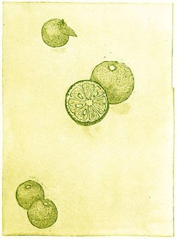 b120121.jpg