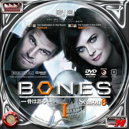 BONES-S6-L1B