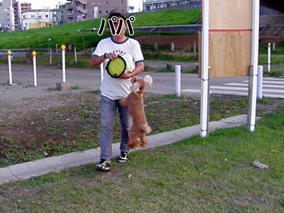 20090827_1.jpg