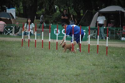 20090927_11.jpg