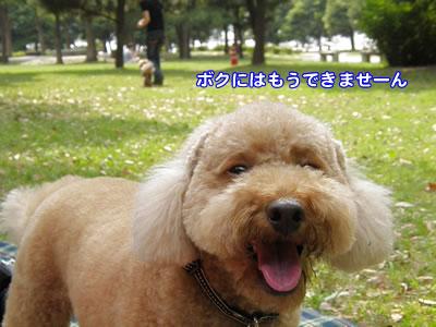 20090930_6.jpg