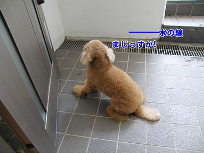 20091008_4.jpg